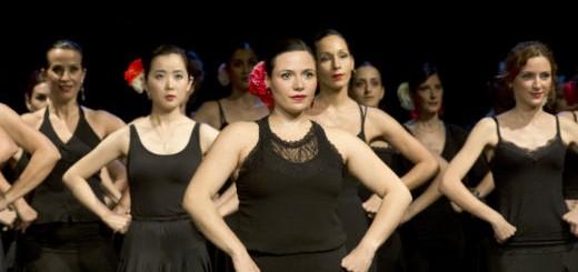 Appassionati al flamenco